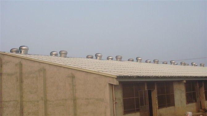 600型自然通风器功用:生产厂家价格